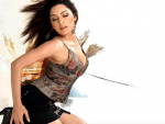 Meera in Big Boss 5