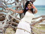 Veena grabs a Bollywood role!