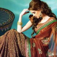 Sari Dress