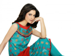 Cynosure Women Fall Dress Collection 2012