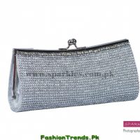 Sparkle Clutches Collection 2013 for Women