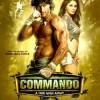 Watch Commando 2013 Movie Details Online