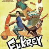Watch Fukrey 2013 Movie Details Online