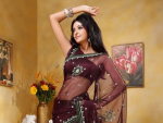 Latest Designs Of Indian Bridal Sarees 2014 For Women
