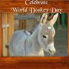 Donkey Day 2014 Miss Donkey Beauty Contest Organized