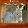 Donkey Day 2014 Miss Donkey Beauty Contest Organized