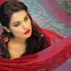 Deepak Perwani Eid Ul Azha Women Dresses 2014