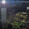 Jurassic World 2015 Official Trailer