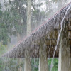 Tips to Prevent Homes from Monsoon Rain'