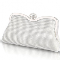 Bridal Clutches in Silver 2016