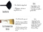 Makeup Brushes Basic Guide For Beginners