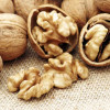 Walnuts Can Protect from Diabetes