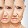 New Important Anti-Aging Chemical Discovered