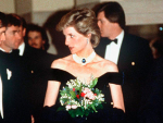 Princess Diana Dresses Displays in February 2017