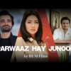 Pakistani Film Parwaaz Hai Junoon 2017