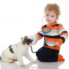 Keep Pet at Home for Better Health of Children
