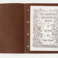 Most Costly Coloring Book Cost for $30,000