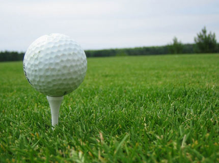 Golf Ball Holder in Grass