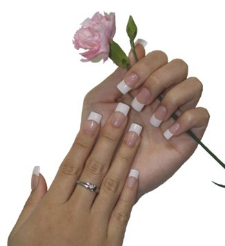 Hands with Pink Rose