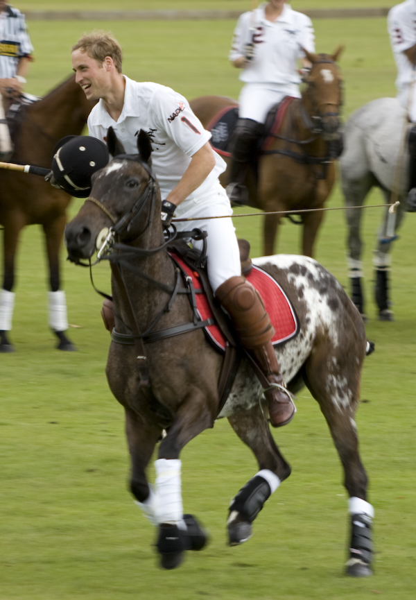 Prince William at a Polo match