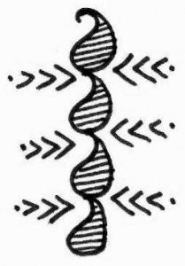 Arm Henna tattoo design sketch