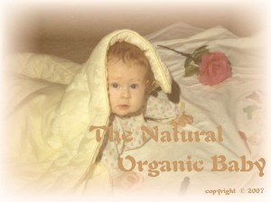 The Natural Organic Baby Products