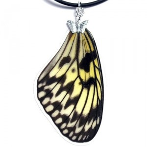 Handmade Real Butterfly Wing Necklace (Idea leuconoe Forewing
