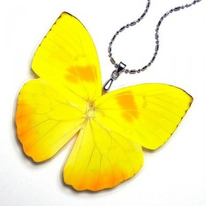 Handmade Real Butterfly Wing Pendant