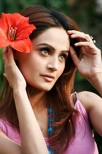 Rose Flower Mehreen Syed