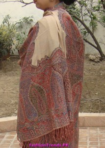 Pashmina Shawl by Paradoosh New Collection 2012