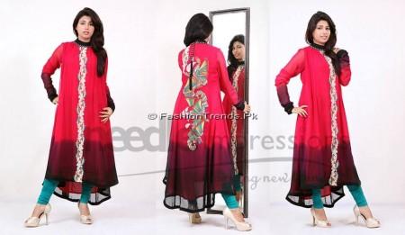 Needle Impressions Premium Eid Dresses 2013 (7)