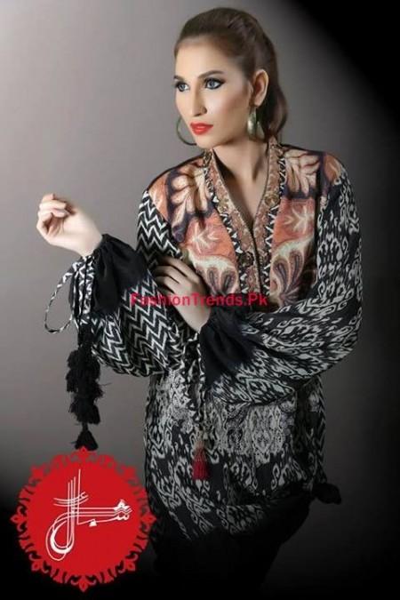 Shamaeel Ansari Winter Dresses 2013 2014 for Women