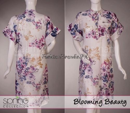 Daaman Spring Dresses 2015 (33)