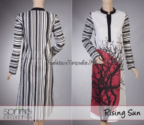 Daaman Spring Dresses 2015 (35)