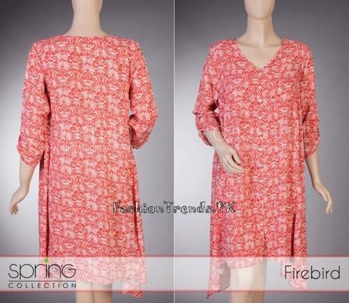 Daaman Summer Dresses 2015 (8)