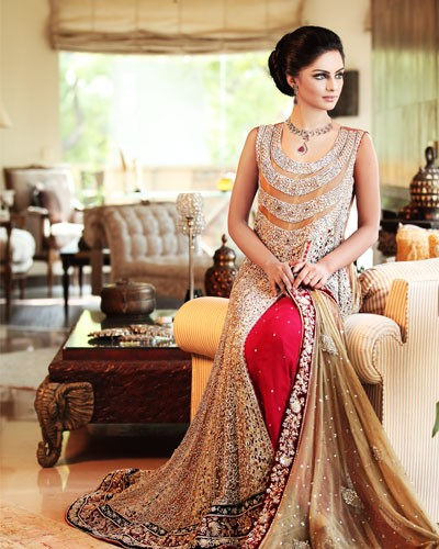 Rani Emaan Bridal Dresses Collection2015