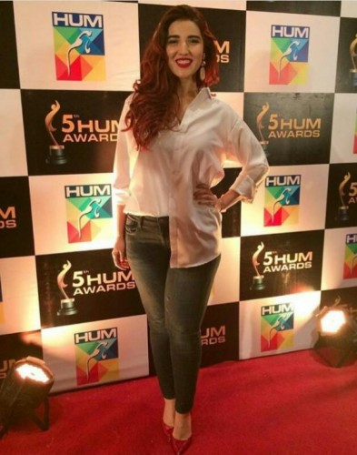 5th Hum Awards Press Conference Pictures