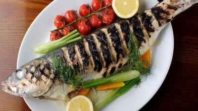 fish Quality
