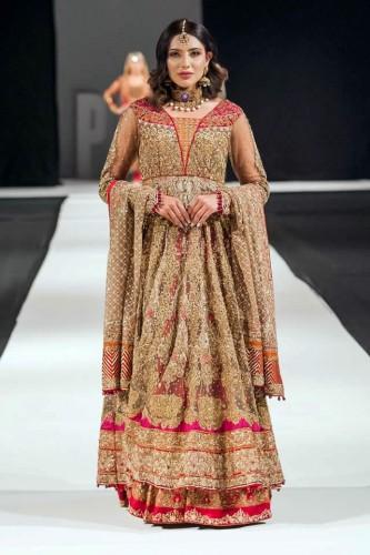 Ayesha Imran6