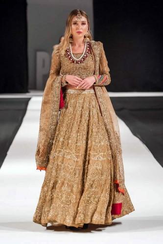 Ayesha Imran7