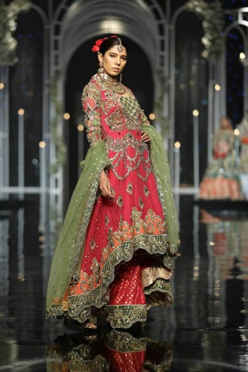 Aisha Sadya5